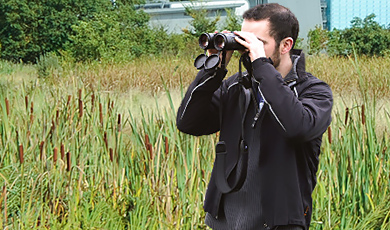 bird watching and wildlife monitoring in the wetlands nature reserve at the wellcome genome campus
